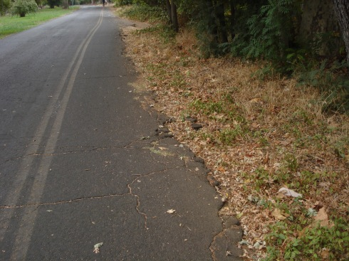 Here the bike trail is crumbling into the weeds.